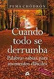 Image de Cuando todo se derrumba: Palabras sabias para momentos difíciles (Budismo)