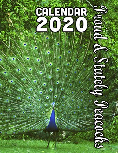 Proud and Stately Peacocks Calendar 2020: 14 Month Desk Calendar for People Who Love These Colorful and Exotic Birds