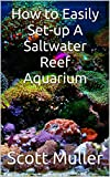 How to Easily Set-up A Saltwater Reef Aquarium