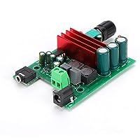 TPA3116 Scheda Amplificatore di Potenza da 100 W Subwoofer Modulo Amplificatore Mono Digitale Durevole con OPAMP NE5532
