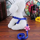 WANGZHENZHEGG The tow rope lovely flowers on the chest strap dog cat rabbitdedicated pet small dog chainDark pink ,S