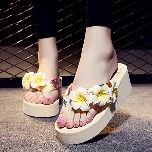 Estate Sandali Pantofole femminili di modo di estate Pattini inferiori antisdrucciolevoli Sandali della spiaggia piatta con 8 colori Colore / formato facoltativo #6