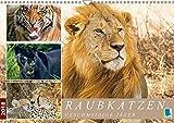 Raubkatzen: Geschmeidige Jäger (Wandkalender 2018 DIN A3 quer): Raubkatzen: Elegant, stark und gefährlich (Monatskalender, 14 Seiten ) (CALVENDO Tiere) [Kalender] [Apr 12, 2017] CALVENDO, k.A.