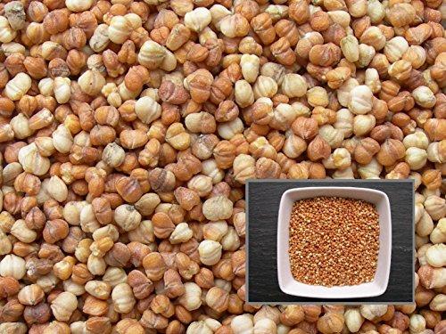 Mâche Vit - 1,50 grammes - Valerianella Locusta (L.) Laterr. - Corn Salad - SEM02