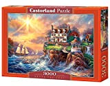 Castorland C-300372-2 - Above the Fray, Puzzle 3000 Teile