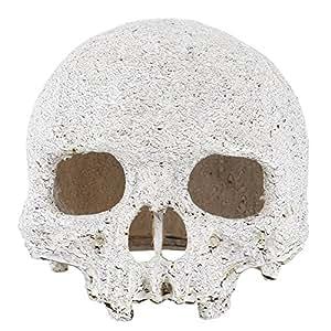 Décoration pour Aquarium Aquarium Terrarium Grotte Résine crâne OS