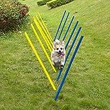 Pet Prime Outdoor Hund Hindernis Agility Training Trainingsausrüstung Kit, Hund Agility Equipment Set -12PCS Weave Pole Set