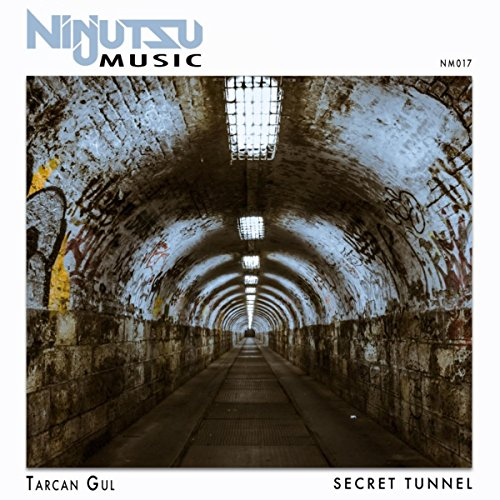 Secret Tunnel (Original Mix)