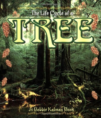 Tree (The Life Cycle)
