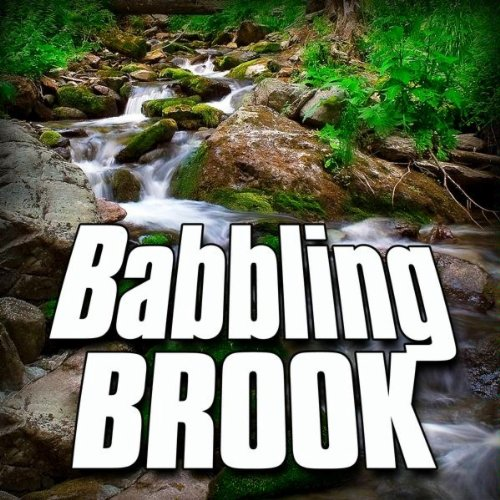 Gentle Babbling Brook