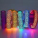 LED Leuchthalsband Hunde halsband Leuchtband Blink 3 Modi Gr. XL grün