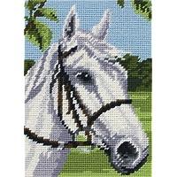 Anchor Stickbild Pferd Gobelin-Set