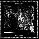 True Trans Soul Rebel [7