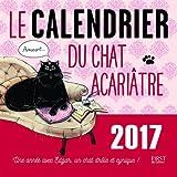 Le calendrier 2017 du chat acariâtre