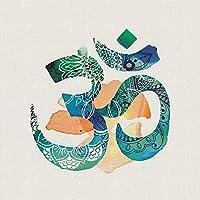 "Summer Thornton ""Om"" Canvas Print, Cotton, Multi-Colour, 3.20 x 40.00 x 40.00 cm"