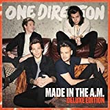 Songtexte von One Direction - Made in the A.M.