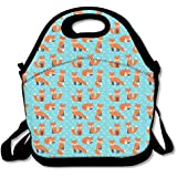 Sleeping Fox Pattern Handy Portable Zipper Lunch Box Lunch Tote Lunch Tote Bags