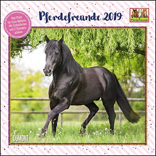 Pferdefreunde 2019 - Broschürenkalender - Kinder-Kalender - Format 30 x 30 cm