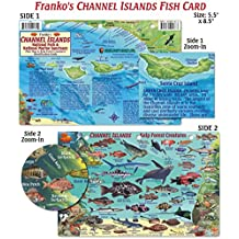 Channel Islands Fish ID for Scuba Divers and Snorkelers