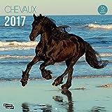 Nouvelles Images Calendrier 2017 Chevaux 16 mois 29 x 29 cm...