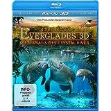 Abenteuer Everglades 3D - Die Manatis des Crystal River