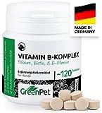 GreenPet Vitamin B Komplex Hund - 8 B Vitamine, Biotin, Folsäure, Mineralstoffe, Hochdosierte Vitamine für Hunde Senior…
