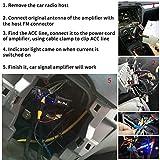 Mr. Ho Auto Antenne Signal Verstärker FM AM f...Vergleich