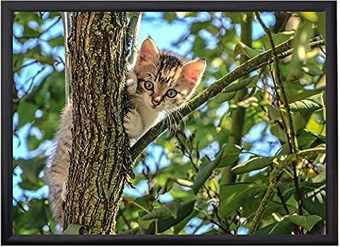 Souci Gifts Luxe Plateau–Chaton dans un arbre - Gattino Albero