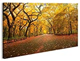 islandburner Bild Bilder auf Leinwand Central Park New York 1K XXL Poster Leinwandbild Wandbild Dekoartikel Wohnzimmer Marke