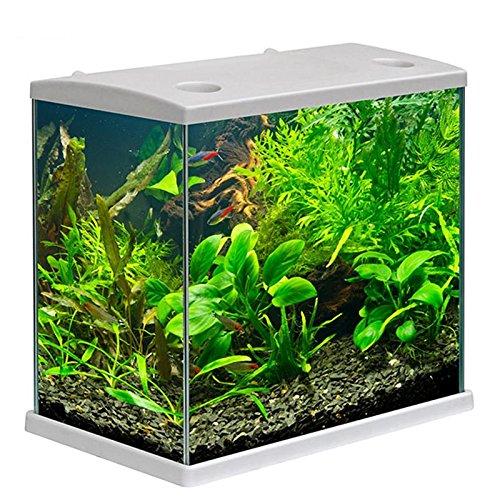 Acquario cleo in vetro colore bianco per pesci rossi completo 22 lt