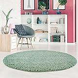 carpetcity Shaggy Pastell Teppich Hochflor Langflor Einfarbig/Uni in Pastell-Grün, Mint aus Polypropylen für Wohn-Schlafzimmer, Größe: 120x120 cm Rund
