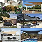AXT SHADE Sonnensegel Rechteck 2x3m,atmungsaktiv Sonnenschutz HDPE mit UV Schutz für Terrasse, Balkon und Garten…
