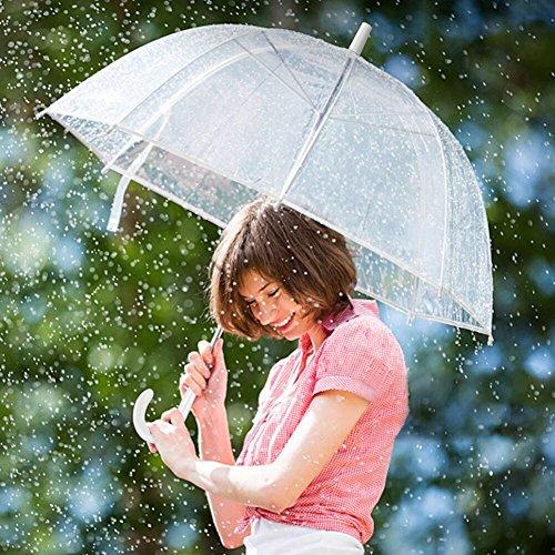 Regenschirm, Hochzeitsschirm | Transparent - 6
