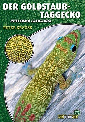 Der Goldstaub-Taggecko - Taggecko