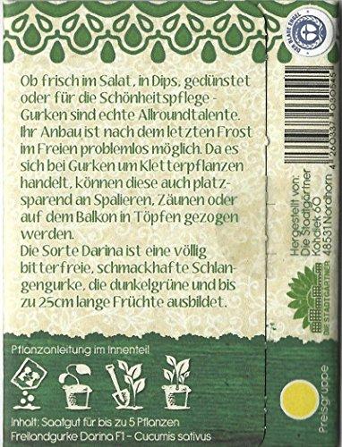 """Die Stadtgärtner Gurke""""Darina""""-Saatgut   knackige und saftige Ergänzung für jeden Salat"""