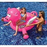 137,2cm Wasser Sport Aufblasbares Schwimmbecken Rutscher fliegendes Schwein Float