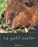 Le petit castor