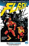 The Flash 2: Speed of Darkness
