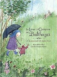 Le livre à compter de Balthazar : A la poursuite du lapin brun