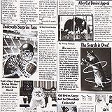 Tela blanca periódico gatos de Timeless Treasures EEUU