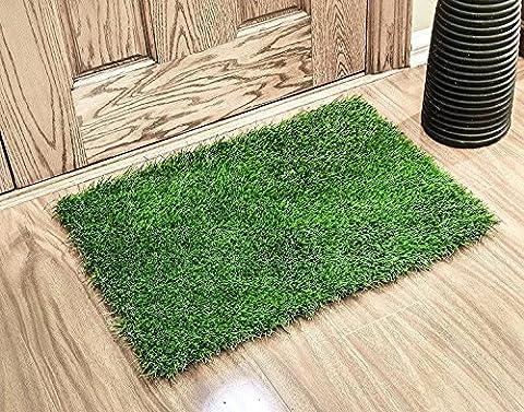 Gazon synthétique Paillasson par Zestynest-Idéal pour l'intérieur, balcon et porche, Green, 24X18 Inches