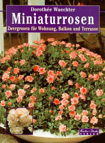 Miniaturrosen. Zwergrosen für Wohnung, Balkon und Terrasse