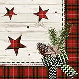 Duni Dunilin Servietten Naturally Christmas 40x40 cm 1/4 Falz 50 Stück