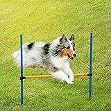 Anself Agility Dog Sport Giochi Formazione Attrezzature Cani Salto Transenna Bar Obbedienza Mostra di Attività Agilità palo di esercitazione Set
