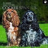 2020 Wandkalender - Cocker Spaniel Kalender, 30 x 30 Zentimeter Monatsansicht auf Englisch, 16-Monat, Hunde und Haustiere Thema, Enthält 180 Anzeigen-Aufkleber