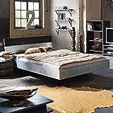 Jugendbett Industrial + Leder Optik silber 90*200 cm Jugendliege Kinderbett Bettliege Bettrahmen Bettgestellt Bett Einzelbett Jugendzimmer