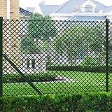Xingshuoonline Gartenzaun 1,5 x 25 m grün Kettenzaun mit Pfosten & alle Hardware Kettengliederzaun verzinkt mit PVC-Beschichtung gegen Rosten oder Schwächung