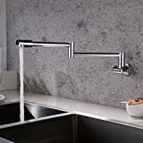 Vhouse Pot Filler Kitchen Sink Faucet Wall Mount with Double Joint Swing Arm & 360 Degree Rotating Aerator 1/2 Inch IPS Male Threaded Easy Installation - Brass and Alloy Finish