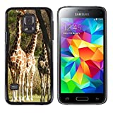 Sólo del estilo caliente teléfono móvil PC carcasa // M00139613 jirafa àfrica faunístico // Samsung Galaxy S5 MINI SM-G800
