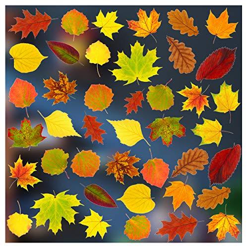 Stickers4-Herbst Dekoration-42 statisch haftende doppelseitige Fenster-Sticker - Fotorealistische Herbstdekoration Fenster